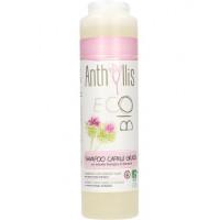 ANTHYLLIS BIO/ECO šampūns taukainiem matiem 250ml | Multum